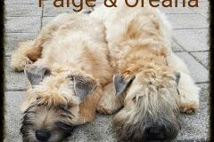 Paige & Oreana